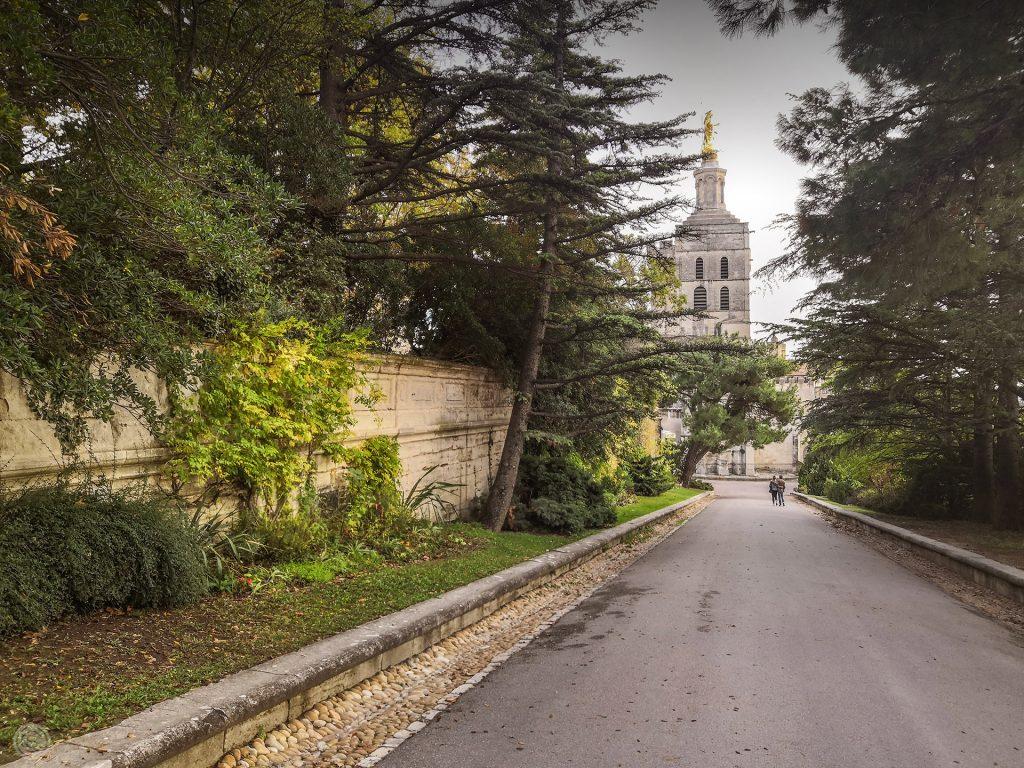 Jardin rocher des Doms Avignon paysage SAFRAN